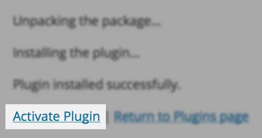 Step 5 - Activate plugin